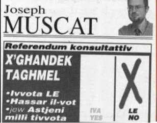 muscat_eu-referendum-2003_how-you-should-vote